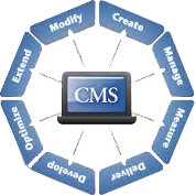CMS Development New York USA